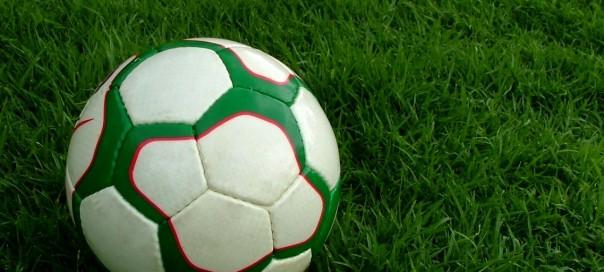 a football on a green football soccer pitch