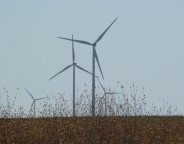 Electricity power-generating windmills at wind farm Kaliakra Bulgaria photo (c) Clive Leviev-Sawyer