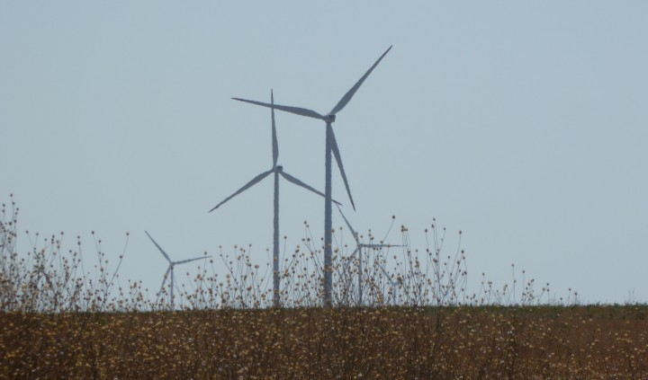 Electricity power-generating windmills at wind farm Kaliakra Bulgaria photo (c) Clive Leviev-Sawyer