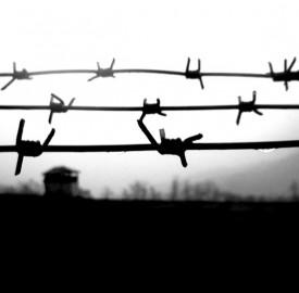 Photo: Amir Darafsheh