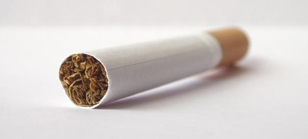 Cigarette-photo-Vjeran-Lisjak-sxc-hu.jpg