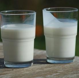 milk Ukko.de