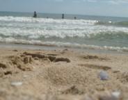 Bulgarian beach seaside Black Sea photo copyright Leah Sawyer