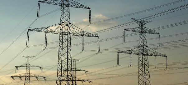 Electricity Distribution Companies Bulgaria