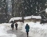Snow March 11 2015 4