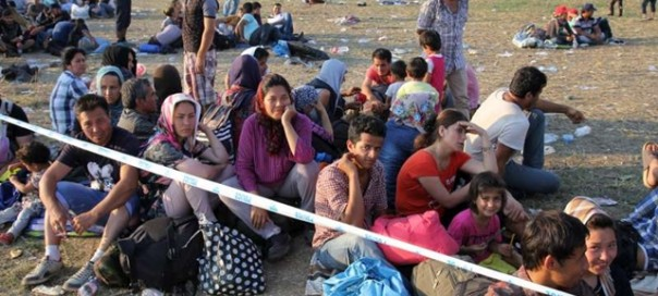 Refugees sit in the sun at a collection point in Röszke near the Hungarian-Serbian border while waiting to be transported to a registration centre photo UNHCR Z Gal