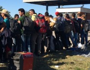 Large groups of young men are among the hundreds of thousands of people moving from the Middle East and Africa towards Europe. Young men say there's no future in warzones, so Europe is their only chance. Photo taken in Opatovac, Croatia, Sept.21, 2015. (VOA / H. Murdock)