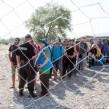 Migrants at a camp near Gevgelija in Greek-Macedonian border photo EC Audiovisual Service