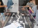 Richard III skeleton at Sofia Science Festival