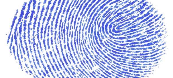 fingerprint-Davide Guglielmo freeimages com