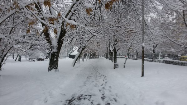 snow-in-sofia-bulgaria-photo-3-copyright-clive-leviev-sawyer